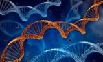 DNA Helix1