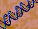DNA Helix 2