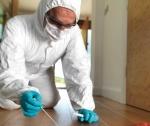 forensic sample