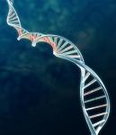 old DNA