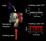 Heat laser and DNA