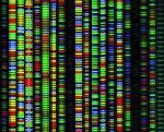 DNA seq