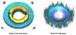 3D Impressions NIST