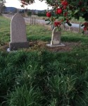 Milton Burial Ground